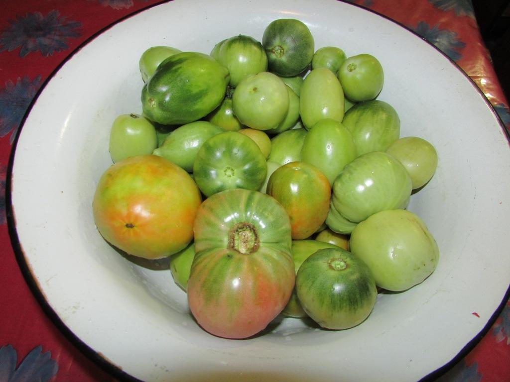салат из зеленых томатов