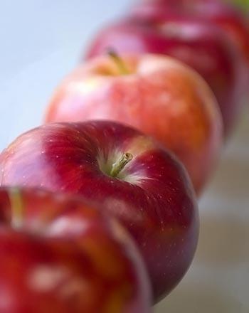 диета миркина 14 дней меню отзывы